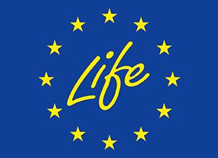 funder__life-thumb